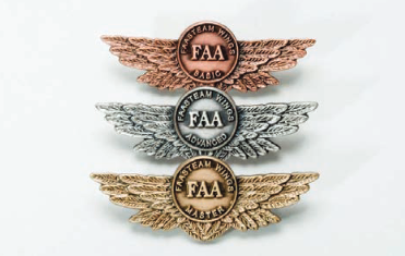 Fasteam wings